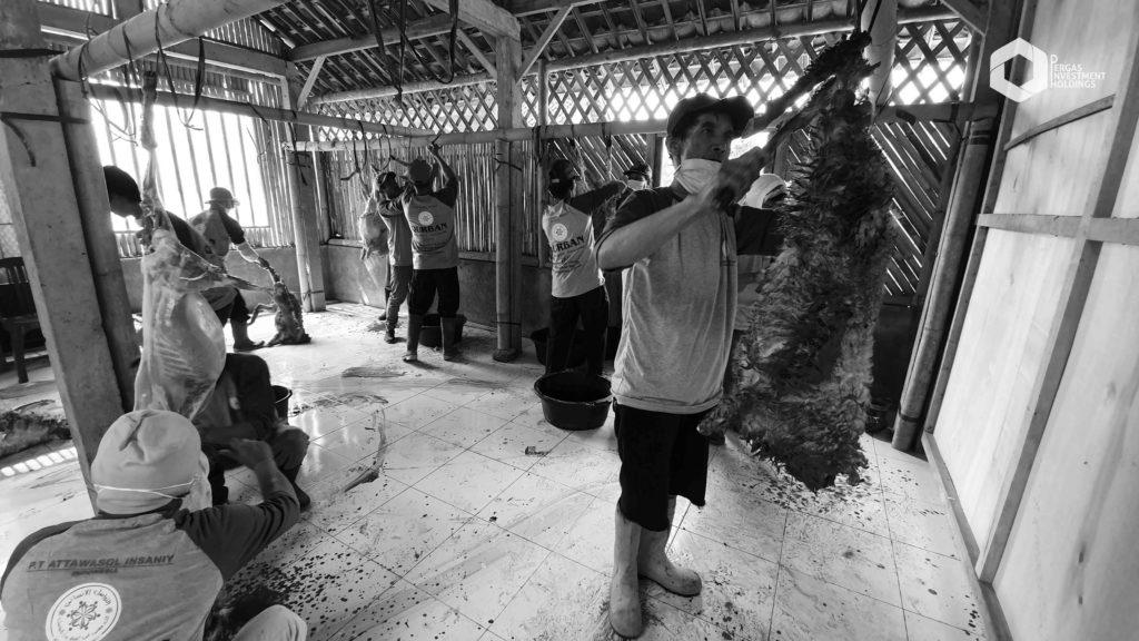 Indonesia - Skinning